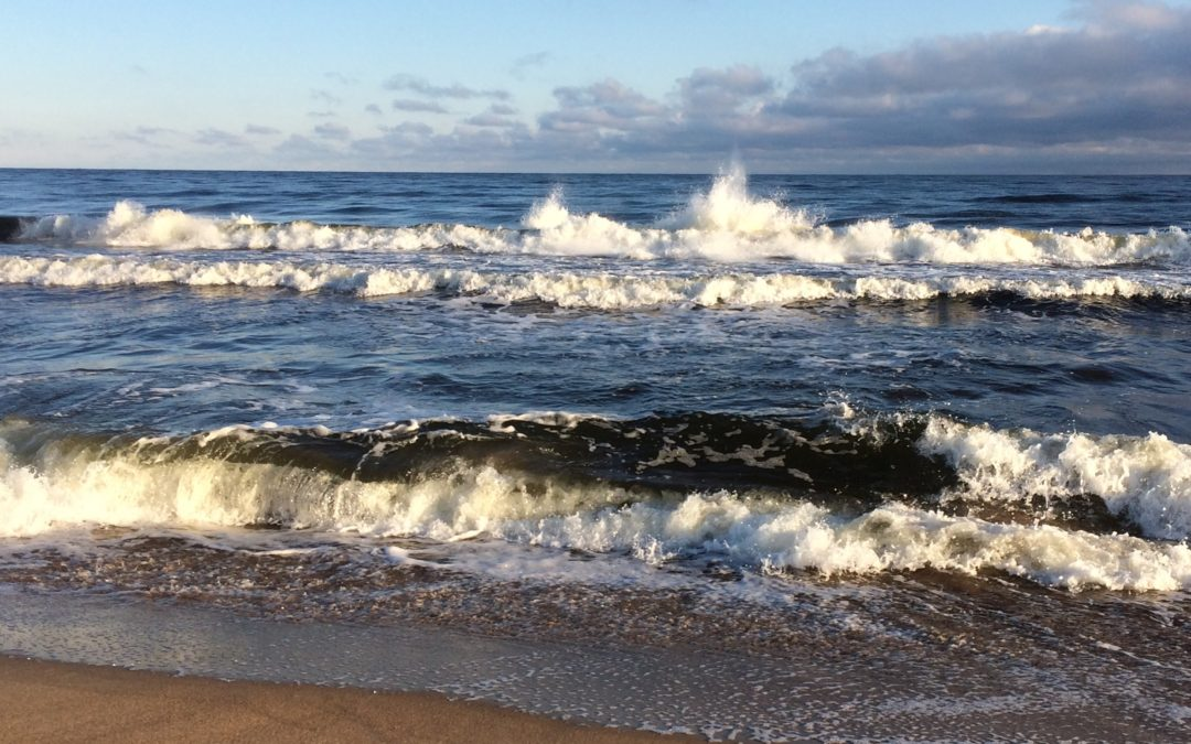 """Start av egen insamling """"Östersjön behöver hjälp"""""""
